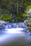 Small forest waterfall Royalty Free Stock Photos