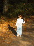 Small Hike in Early Autumn. A toddler with a walking stick meandering along a leaf lined path in the early fall royalty free stock image