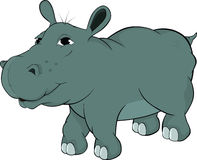 Small hippopotamus .Cartoon Stock Photos
