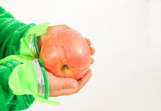 Small holding apple Stock Photography