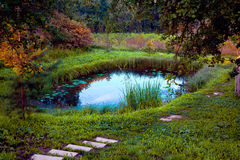 Small homemade pond. A small pond on the home plot Stock Photo