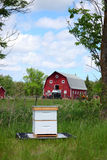Small Honey Bee Hive on a Farm Stock Image