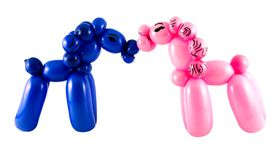 Small horses made from balloon. S set on white background Royalty Free Stock Photo