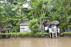 Small house on the Amazon royalty free stock photos