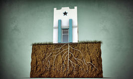 Small house with big roots Stock Photography