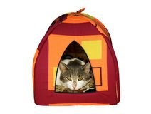 Small house for a cat. It is isolated on a white background Royalty Free Stock Photos