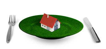 Small house concept on grass plate Royalty Free Stock Photography