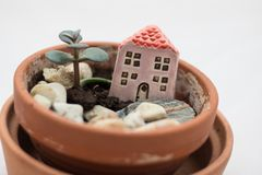 Small house in a flowerpot with stones flower. Small house in a flowerpot with stones and small green flower. Concept for mortgage, housing, real estate and stock image