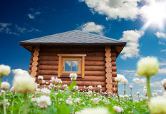 Small house on flowers meadow Stock Image