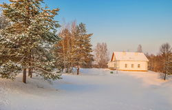 Small house in the forest Royalty Free Stock Photos