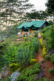 Small house on a green hill at mountains Stock Photo