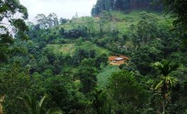 Small house on a hillside, Sri Lanka Royalty Free Stock Photography