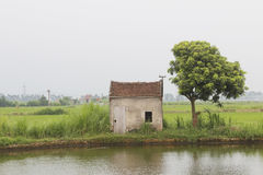 Small house in lake Royalty Free Stock Image