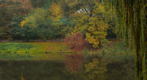 A small house by the lake in autumn Stock Photography