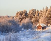 Small house in the middle of a winter forest stock image