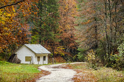 Small house in the mountains, Prahova Valley, Romania. Colorful autumn picture of a small house on a rocky road in Zarnesti, Prahova Valley, Romania Stock Photos