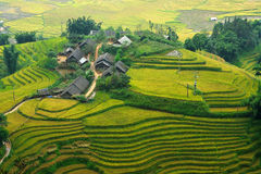Small house with Rice terraces Stock Images