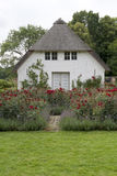 Small House in the Rose Garden Stock Photography