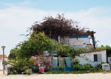 Small House Surrounded By Vegetation On Ilha De Culatra Portugal stock images