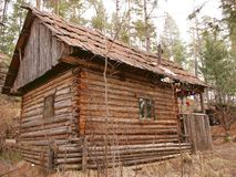Small house in a taiga. A lonely hunting small house in the Siberian taiga Royalty Free Stock Images