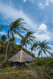 Small house with thatched roof between palm trees Royalty Free Stock Images