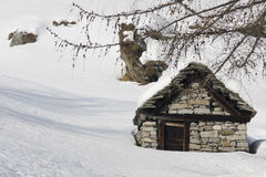 Small house and tree on the alps Royalty Free Stock Image