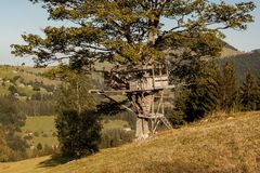 Small tree house Royalty Free Stock Image
