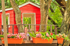 Small house on the tree top and flowers Royalty Free Stock Images