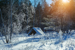 Small house in the winter forest. Arbor, covered with snow in the winter forest. Bright frosty sunny day Royalty Free Stock Photo