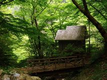 Small house in the woods Royalty Free Stock Photos