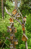 Small houses for birds. An image of small houses for birds Royalty Free Stock Photo