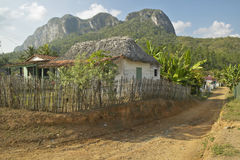 Small houses in front of limestone mountains in the Valle de Vi�ales, in central Cuba Royalty Free Stock Photos