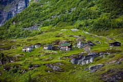Small houses with grass roofs in Norway in summer Stock Photography