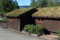 Small houses with traditional Norwegian grassy roofs Stock Photos