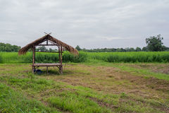 A small hut in the farm Royalty Free Stock Images