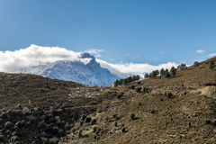Small hut and fir trees with snow covered Monte Padru in Corsica Royalty Free Stock Photography