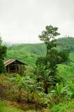 Small hut on mountain, Thailand Stock Photos