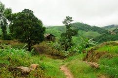 Small hut on mountain, Thailand Royalty Free Stock Photo