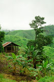 Small hut in mountain, Thailand Stock Images