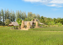 Small huts in rice paddy field Royalty Free Stock Photo