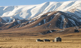 Small huts on Tussockland below Snowcapped Mountains Royalty Free Stock Photography