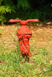 Small Hydrant Stock Images