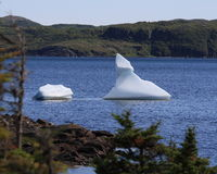 Small Icebergs in St. Anthony Bight Royalty Free Stock Photo