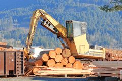 Log Loader in Lumber Yard royalty free stock image