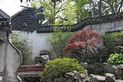 A small internal Chinese courtyard and trees. City of Shanghai.  stock photos