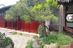 A small internal Chinese courtyard and trees. City of Shanghai.  royalty free stock image