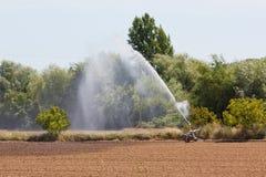 Small irrigation equipment on a plantation. Stock Photo