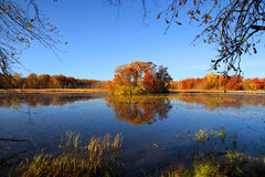 Small island with autumn trees Stock Image