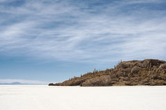 Small island with cactuses on Salar de Uyuni Royalty Free Stock Photos