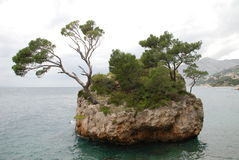 Small island, Croatia Stock Photos